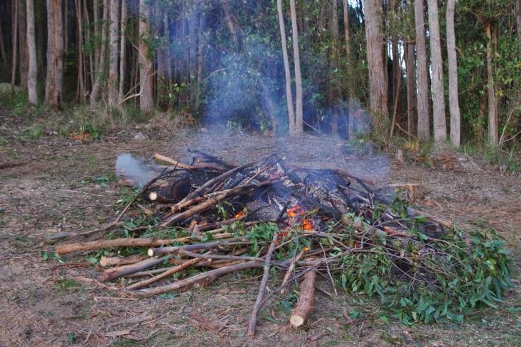 http://3.bp.blogspot.com/-1LSyjYp-Dlo/U99qGOIQceI/AAAAAAAAAMc/O9P9YAcKFtE/s1600/Burn+off.jpg