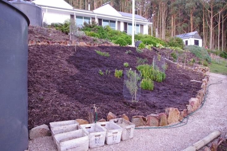 http://3.bp.blogspot.com/-TaLTXH-cunI/U99qUlxf3eI/AAAAAAAAAM8/GF3avOLBVTc/s1600/Lower+garden+now+fully+mulched.jpg