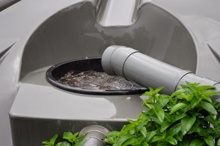 http://4.bp.blogspot.com/-gFfeKBueWg0/VHL7dDsFiOI/AAAAAAAAAis/9kTR3kLKEBE/s1600/Rainwater%2Bcollecting%2Binto%2Bthe%2Bhouse%2Btanks.jpg