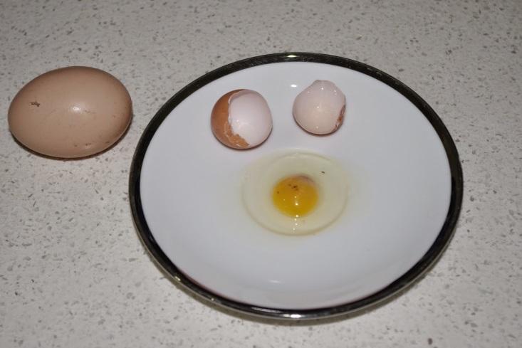 http://4.bp.blogspot.com/-zTo8I9EG-RE/U_HRABQKQRI/AAAAAAAAAPg/ybJ0T40iUdg/s1600/Egg%2Bmystery%2B2.jpg