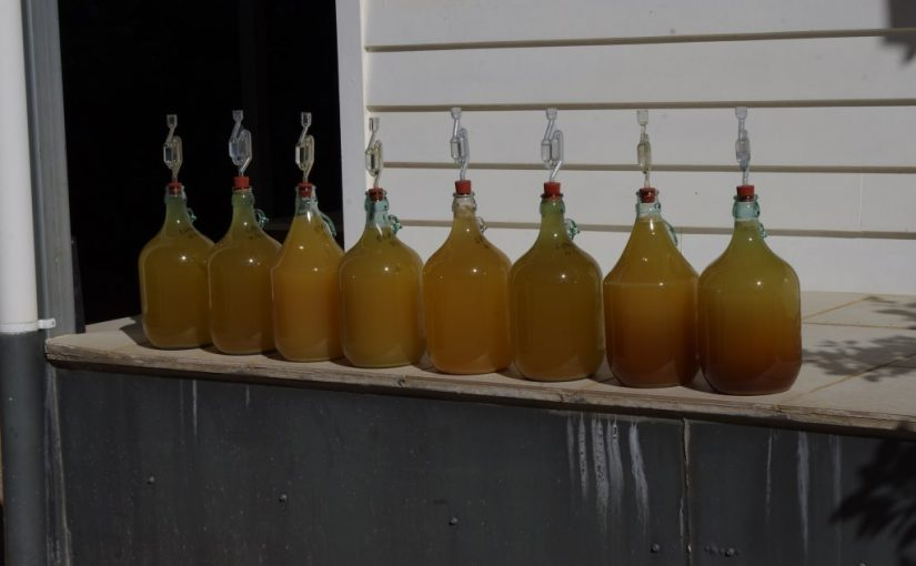 I feel the need. The need for mead