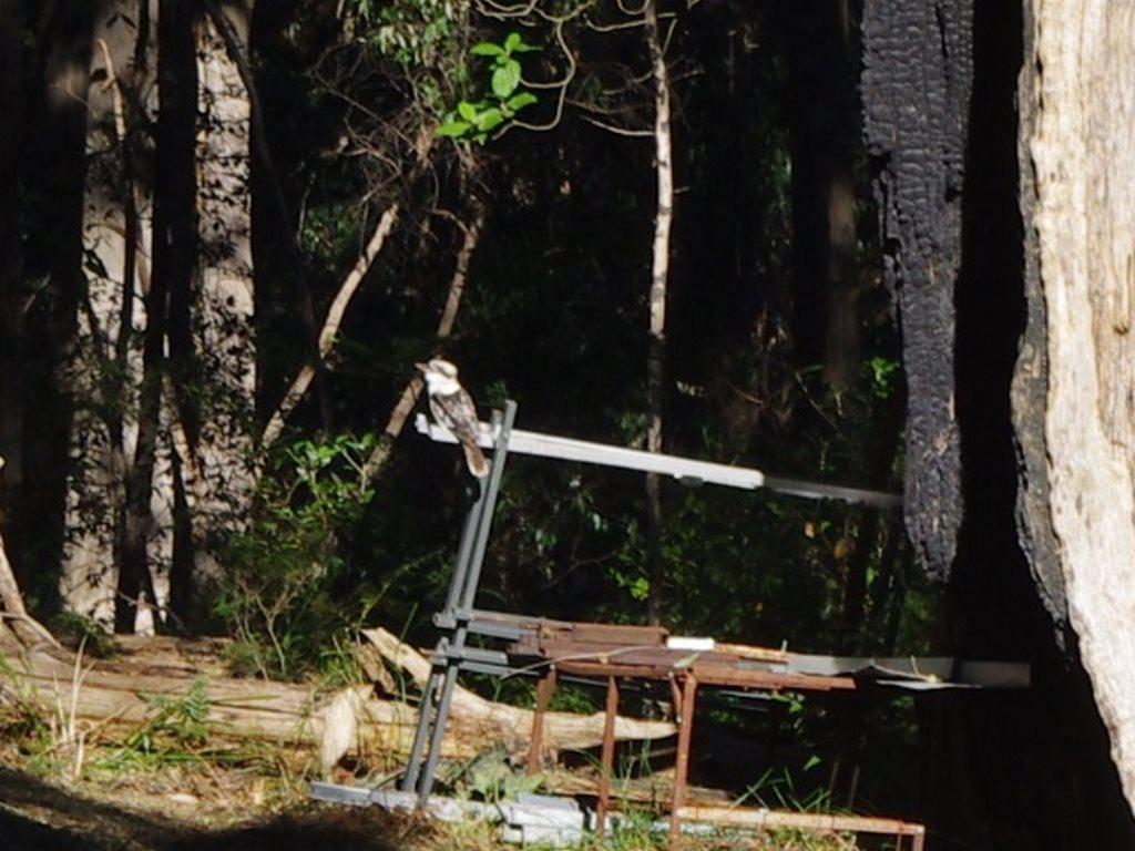 www.ferngladefarm.com.au
